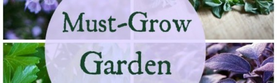 Must-Grow Kitchen Garden Herb Plants by Ang England