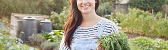 Organic Gardening: 10 Tips to Success by Dianne Venetta